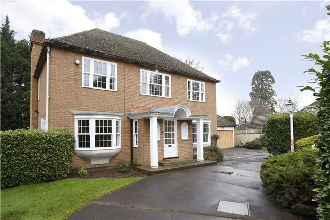 Thumbnail Detached house to rent in Edgecoombe Close, Coombe, Kingston Upon Thames