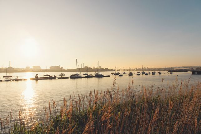 River Sunrise of No 5, 2 Cutter Lane, Upper Riverside, Greenwich Peninsula SE10