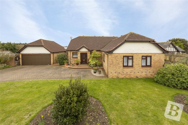 Thumbnail Bungalow for sale in Hockley Close, Bradwell-On-Sea, Essex