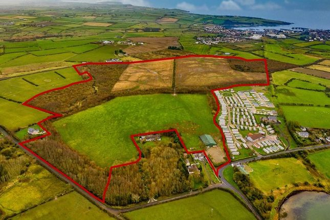 Thumbnail Property for sale in Crew Road, Ardglass, Downpatrick