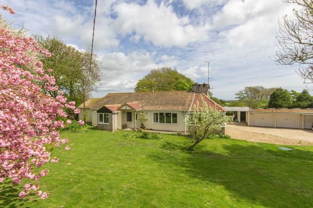 Thumbnail Detached bungalow for sale in Roman Road, Maydensole, Dover