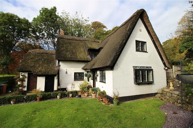 Thumbnail Cottage for sale in The Hollow, Littleover, Derbyshire