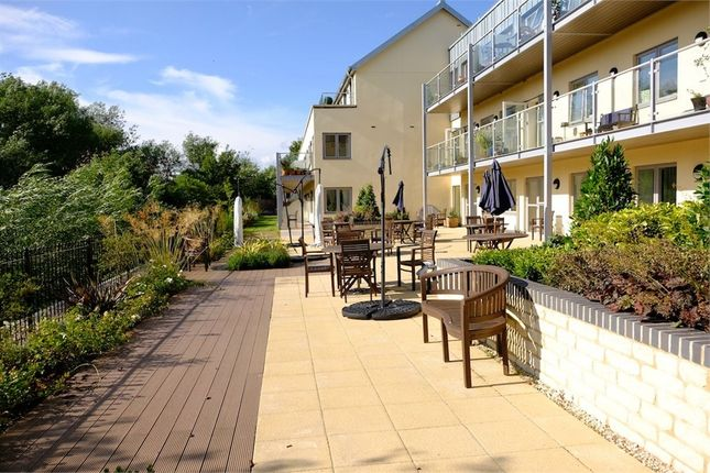 Thumbnail Flat for sale in Westmead Lane, Chippenham, Wiltshire