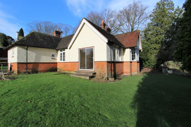 2 bed detached bungalow to rent in Mill Lane, Steep, Petersfield GU32