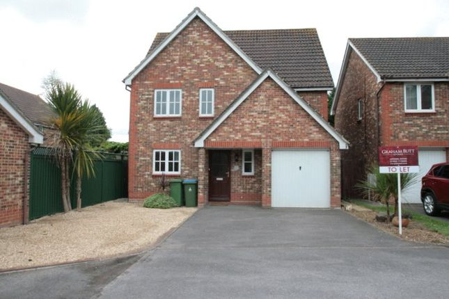Thumbnail Property to rent in Harebell Close, Littlehampton