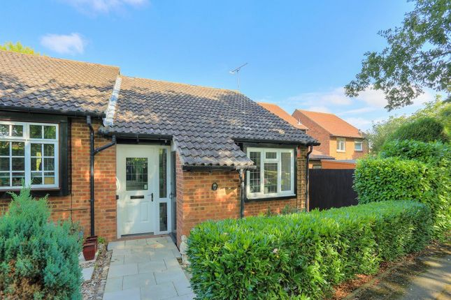 Thumbnail Bungalow to rent in Ripon Way, St.Albans