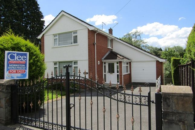Thumbnail Detached house for sale in Park Road, Ynystawe, Swansea, City And County Of Swansea.