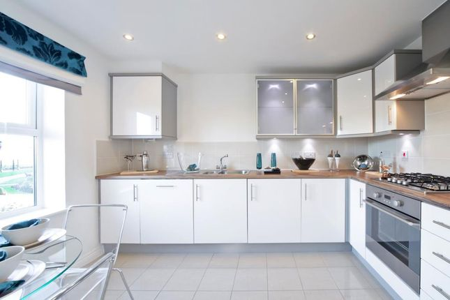 """Thumbnail Terraced house for sale in """"Plot 334 - The Flatford"""" at Ashburton Road, Newton Abbot"""