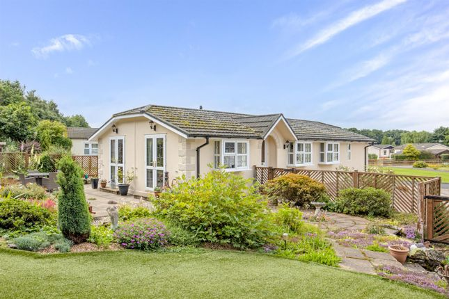 Thumbnail Detached bungalow for sale in Maple Crescent, Kelso