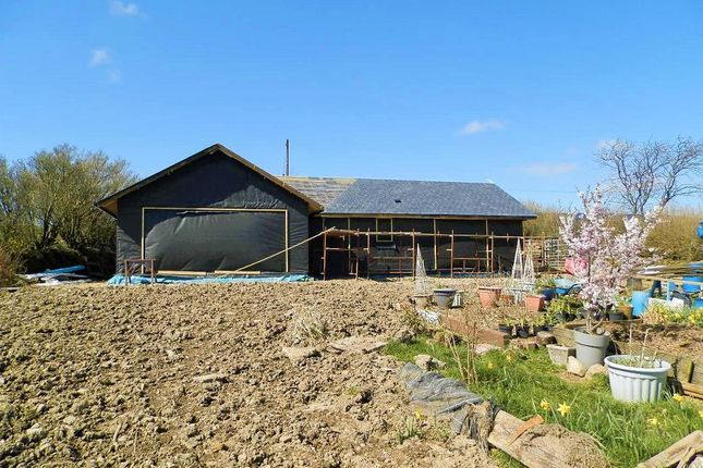 Thumbnail Detached bungalow for sale in Cardigan Road, Pentregaler, Nr Crymych, Pembrokeshire