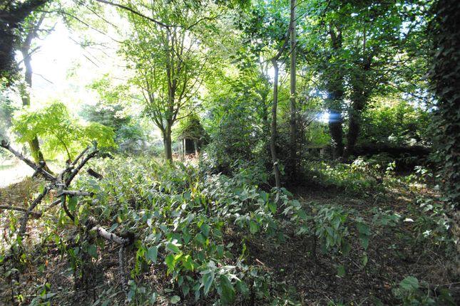 Thumbnail Land for sale in Locks Lane, Wantage