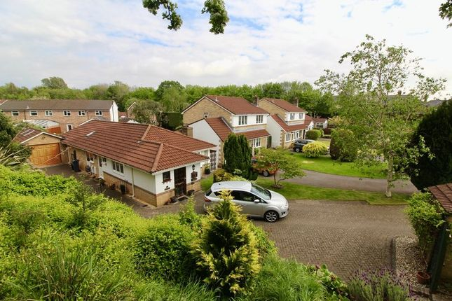 Thumbnail Bungalow for sale in Silver Birch Close, Whitchurch, Cardiff