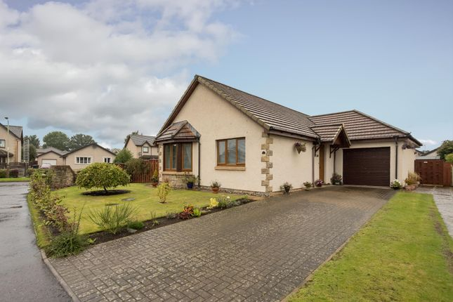 Willow Place, Blairgowrie, Perthshire PH10