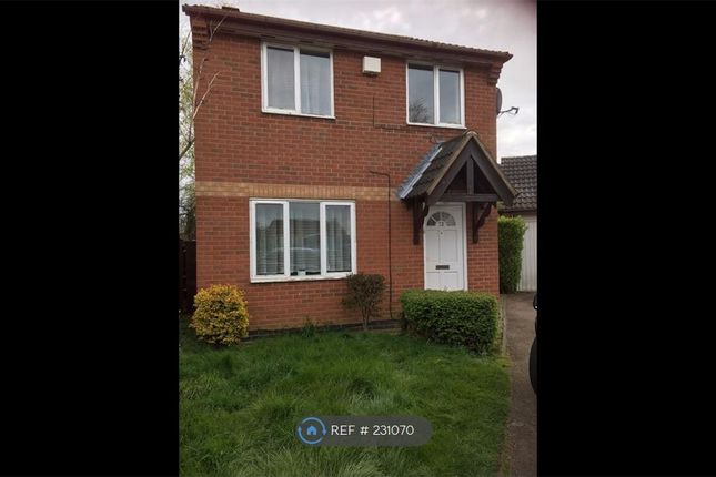 Thumbnail Detached house to rent in Meadowsweet Road, Leicester