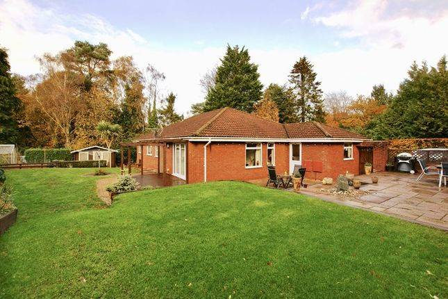 Thumbnail Bungalow for sale in Rushall Lane, Lytchett Matravers, Poole