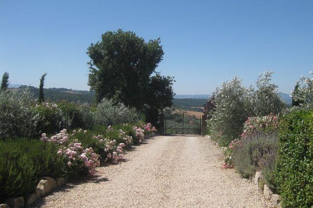 Drive of La Torretta, Grutti, Todi, Umbria