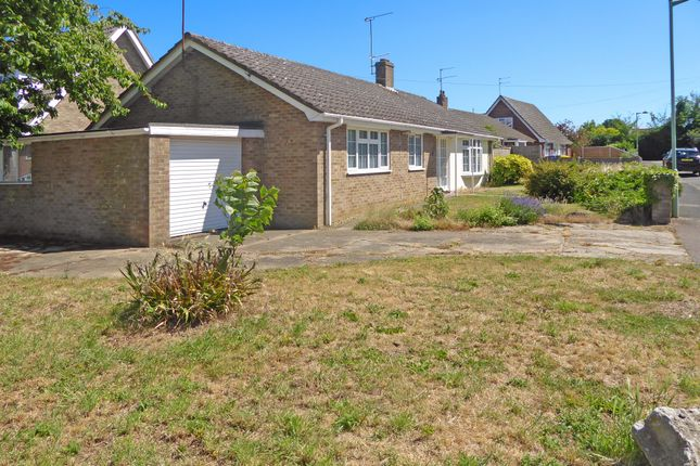 Thumbnail Detached bungalow to rent in Cromwell Avenue, Beccles