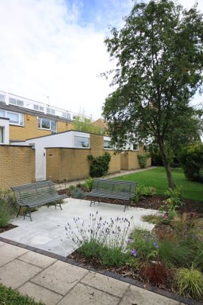 Thumbnail Terraced house to rent in Blackheath Park, Blackheath