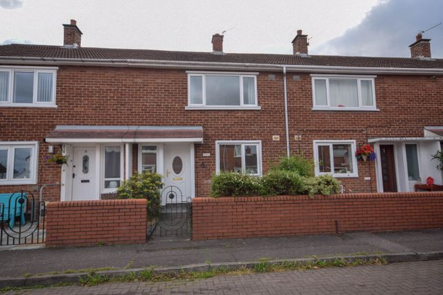 Thumbnail Terraced house for sale in Ashburn Green, Belfast