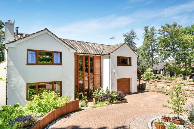 Thumbnail Detached house for sale in Church Lane, Ewshot, Farnham