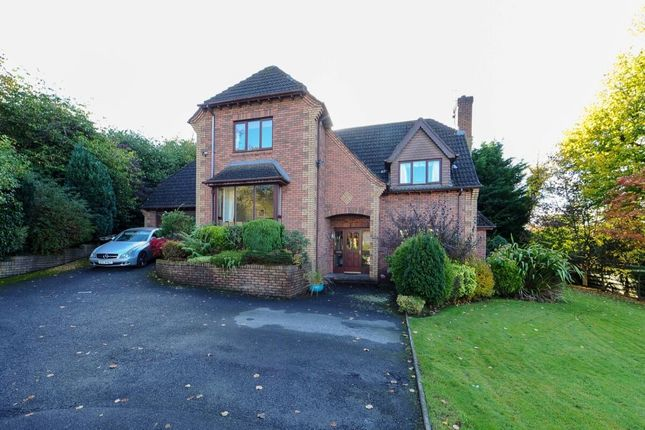 Thumbnail Detached house for sale in Glen Ebor Heights, Belfast