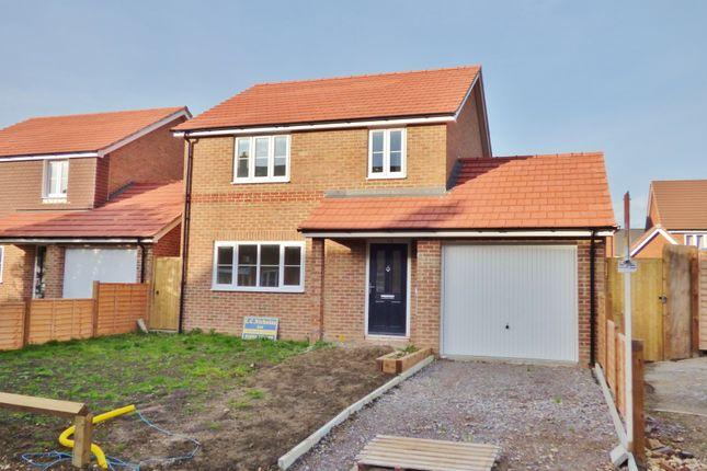 Thumbnail Detached house for sale in Toddington Lane, Wick, Littlehampton