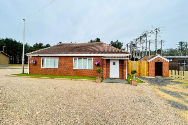 3 bed bungalow to rent in Thorne Road, Austerfield, Doncaster DN10
