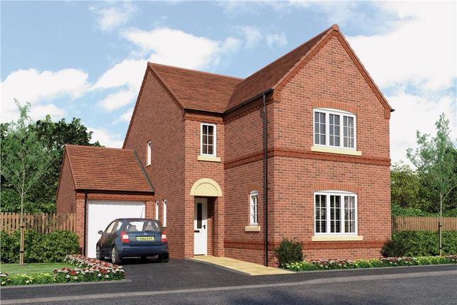 "Thumbnail Detached house for sale in ""Esk"" at Radbourne Lane, Derby"