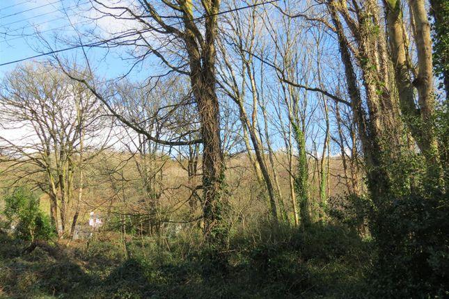 Img_9621 of Lower Tregongeeves Lane, Polgooth, Polgooth PL26