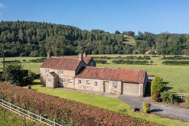 Thumbnail Detached house for sale in Rievaulx, York