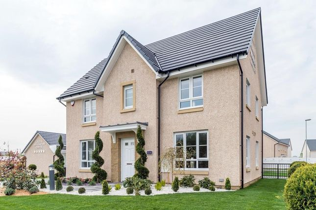 """Thumbnail Detached house for sale in """"Craigston"""" at Prospecthill Road, Motherwell"""