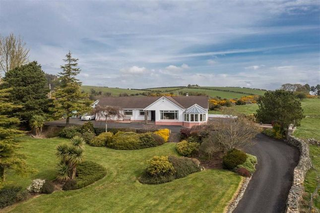 4 bed detached bungalow for sale in Glassdrumman Road, Ballynahinch, Down BT24