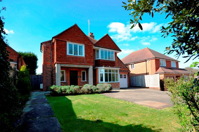 Thumbnail Detached house for sale in Decoy Drive, Eastbourne