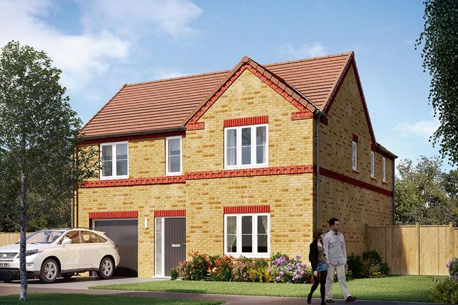 "Thumbnail Detached house for sale in ""The Norbury"" at Carr Green Lane, Mapplewell, Barnsley"