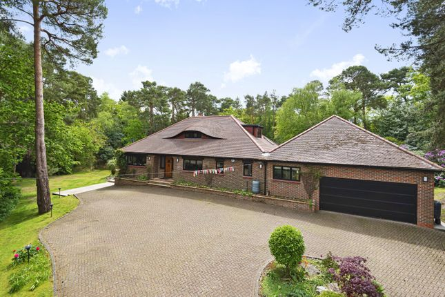 Thumbnail Detached house for sale in Pine Coombe, Croydon