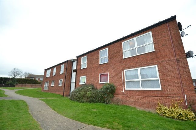 Thumbnail Flat to rent in Arnold Drive, Colchester