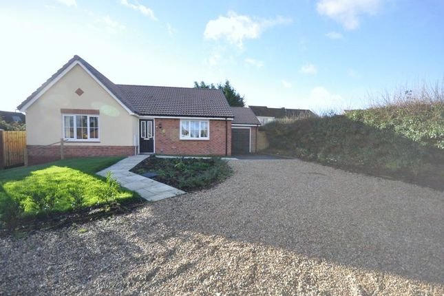 Thumbnail Bungalow for sale in Orchard Close, Coleford, Radstock