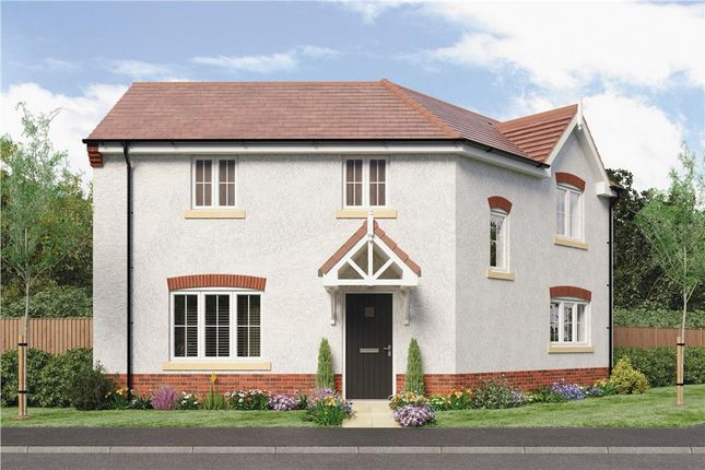 "Thumbnail Detached house for sale in ""Pomeroy"" at Oteley Road, Shrewsbury"