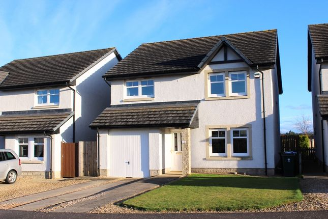 Thumbnail Detached house for sale in Blackthorn Place, Blairgowrie