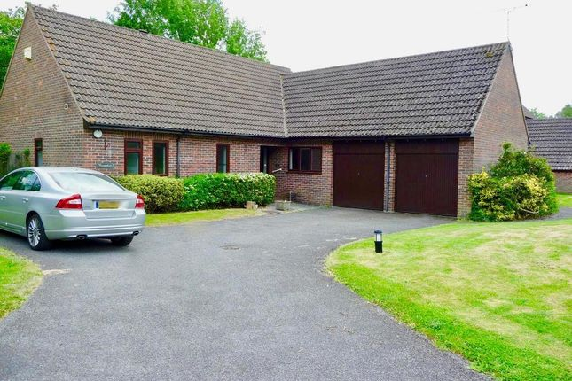 Thumbnail Detached bungalow to rent in Mayfield, Rowledge, Farnham, Surrey