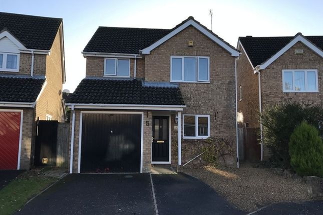 Thumbnail Detached house to rent in Broadmeadow Close, Totton, Southampton