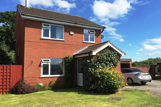 Thumbnail Detached house for sale in Williams Close, Penyffordd, Chester