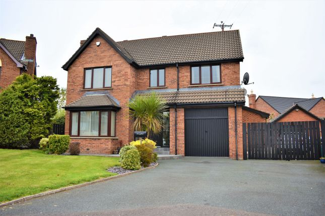 Thumbnail Detached house for sale in Thornhill Avenue, Lisburn