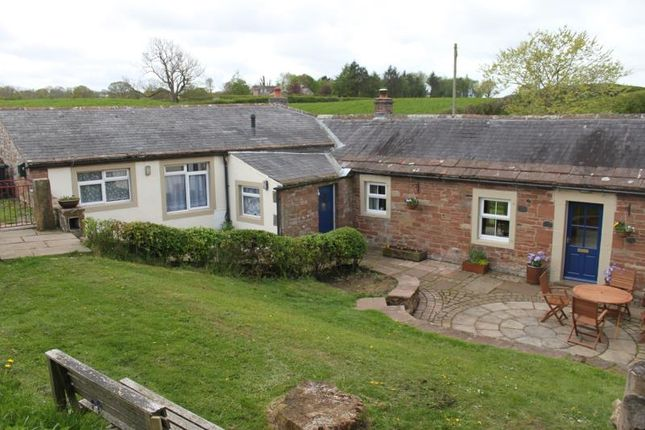 Thumbnail Cottage to rent in Brockholes, East Curthwaite, Wigton
