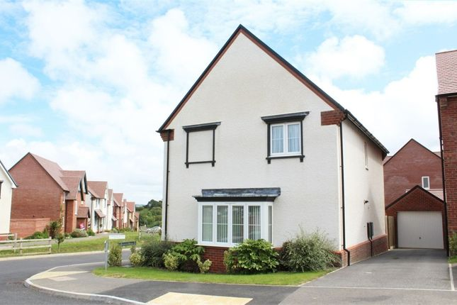 Thumbnail Detached house for sale in Needs Drive, Bideford, Devon
