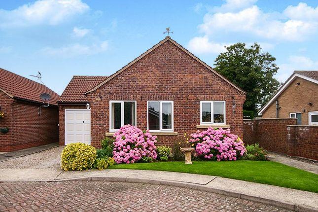 Thumbnail Detached bungalow for sale in Fletcher Court, Wigginton, York