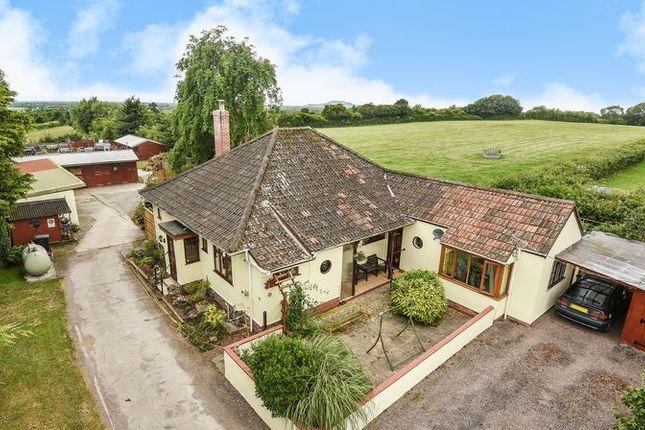 Thumbnail Detached bungalow for sale in Ashton, Wedmore