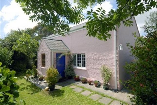 Thumbnail Cottage to rent in Cosheston, Pembroke, Pembrokeshire