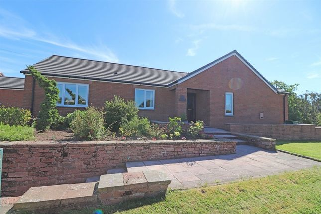 Thumbnail Detached bungalow for sale in Longtown Road, Brampton, Cumbria
