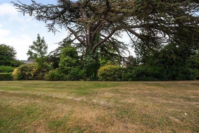 Garden of Aylestone Hill, Hereford HR1